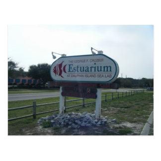 Estuarium Postcard