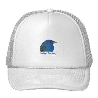 Étamine d'indigo casquettes