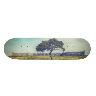 Eternal Skate Decks
