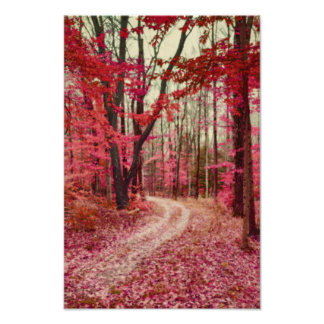 Ethereal Forest Path With Red Fall Colors Photo Print