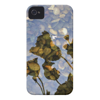 Ethereal Lotus iPhone 4 Cover