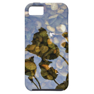 Ethereal Lotus iPhone 5 Cases