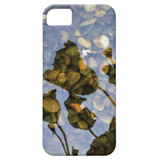 Ethereal Lotus iPhone 5 Covers