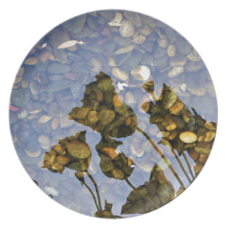 Ethereal Lotus Plate