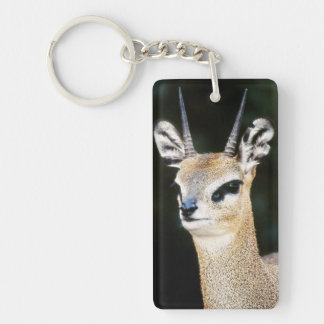 Ethiopia, Klipspringer looking away Keychain