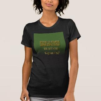 Ethnic Classic newton law of motion T-Shirt