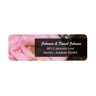 Étiquettes de adresse de rose de rose