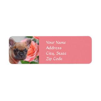 Étiquettes de adresse roses de bouledogue français
