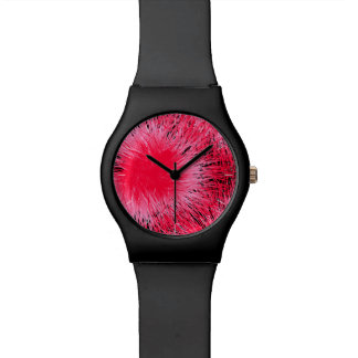 Eucalyptus flower watch
