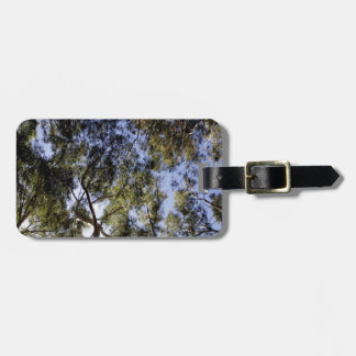 Eucalyptus Tree Canopy Bag Tag