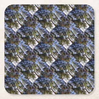 Eucalyptus Tree Canopy Square Paper Coaster