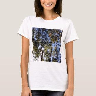 Eucalyptus Tree Canopy T-Shirt
