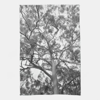 Eucalyptus Tree Kitchen Towel