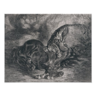 Eugene Delacroix - Wild Horse Felled by a Tiger Poster