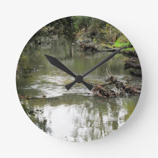 EUNGELLA NATIONAL PARK QUEENSLAND AUSTRALIA CLOCKS