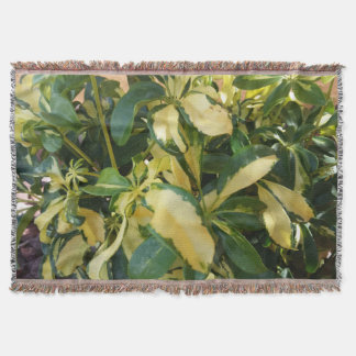 Euonymus Fortunei Green and Yellow Leaves Plant Throw Blanket