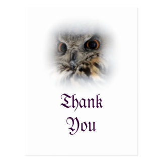 Eurasian Eagle-owl Thank You Postcard