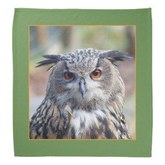 Eurasian Eagle-Owl, Uhu 02.2.o Bandana