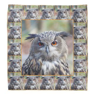 Eurasian Eagle-Owl, Uhu 02.4.2.o Bandana