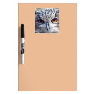 Eurasian Eagle-Owl, Uhu 02.4 Dry Erase Board