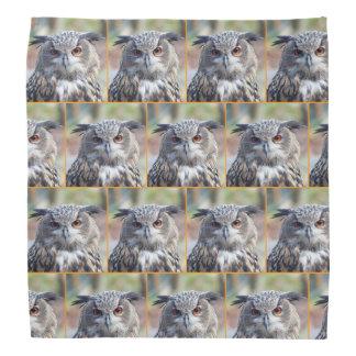 Eurasian Eagle-Owl, Uhu 02.4.o Bandana