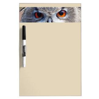 Eurasian Eagle-Owl, Uhu 03.2 Dry Erase Board