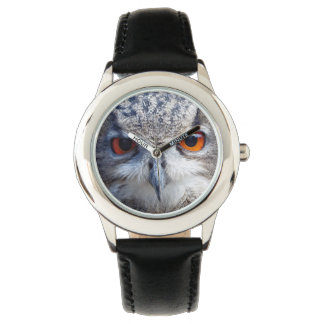 Eurasian Eagle-Owl, Uhu 2.3 Watch