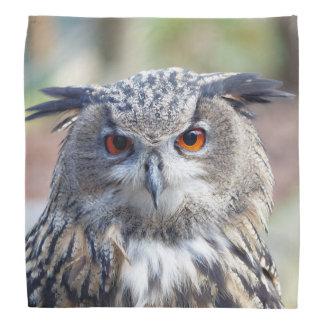 Eurasian Eagle-Owl, Uhu Bandana