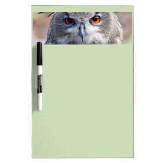 Eurasian Eagle-Owl, Uhu Dry Erase Board