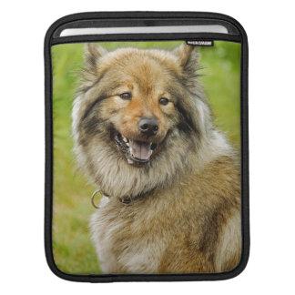 Eurasian , medium , spitz-like , dog iPad sleeve