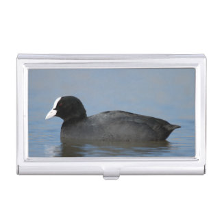 Eurasian or common coot, fulicula atra case for business cards