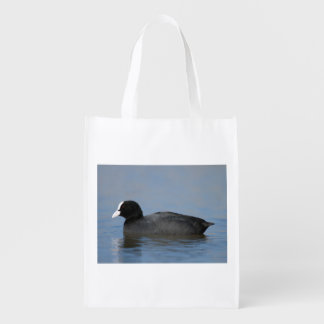 Eurasian or common coot, fulicula atra, portrait o reusable grocery bag