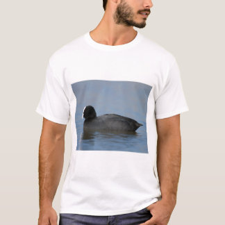 Eurasian or common coot, fulicula atra, portrait o T-Shirt