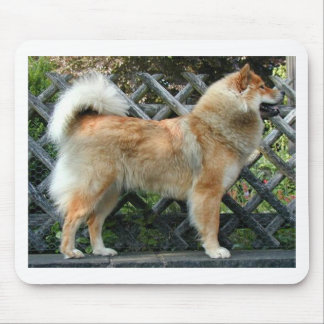 Eurasier_full Mouse Pad