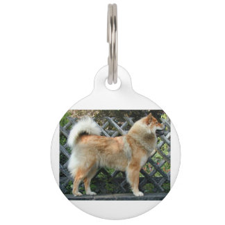 Eurasier_full Pet Tag