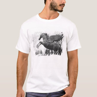 Europe, Austria, Salzburg. Winged horse statue, 2 T-Shirt