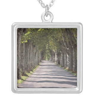 Europe, France, Cereste. Trees line this road Silver Plated Necklace