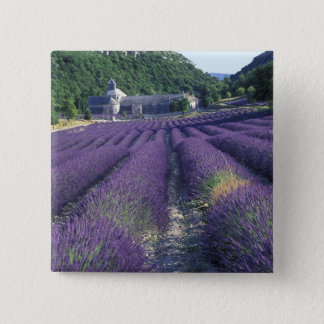 Europe, France, Provence. Lavander fields 2 Inch Square Button