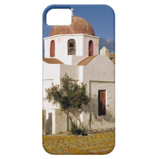 Europe, Greece, Mykonos. Fishing nets dry on the iPhone 5 Case