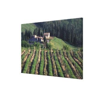 Europe, Italy, Tuscany. Scenic villa cyprus. Canvas Print