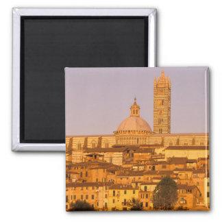 Europe, Italy, Tuscany, Siena. 13th century 2 Magnet