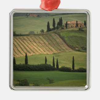 Europe, Italy, Tuscany, Val d' Orcia, Tuscan Silver-Colored Square Ornament