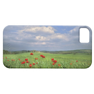 Europe, Tuscany, Poggiolo. Red poppies sway Case For The iPhone 5