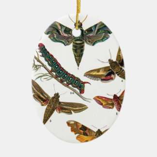 European Butterfly Ceramic Ornament