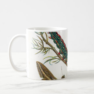 European Butterfly Coffee Mug