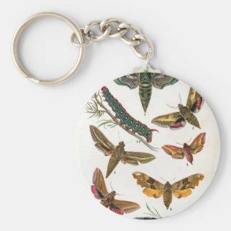 European Butterfly Keychain
