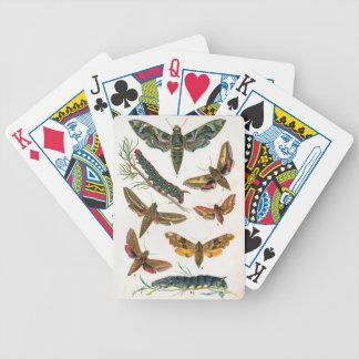 European Butterfly Poker Deck