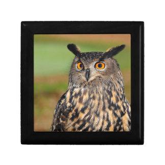 European Eagle Owl Gift Box