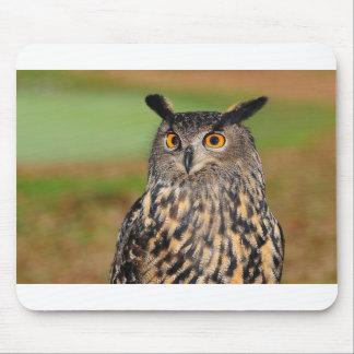 European Eagle Owl Mouse Pad