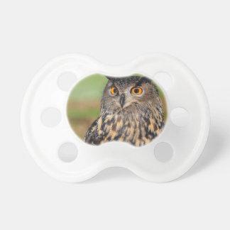 European Eagle Owl Pacifier
